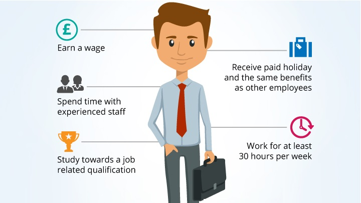An infographic explaining what an Apprenticeship is